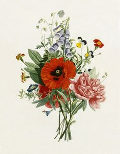wanderlust and appetite: Botanical Illustrations (tattoo inspiration)