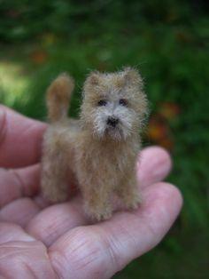 Cairn Terrier 1/12