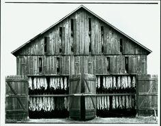 Old tobacco barn - Southern Maryland. A common sight from my childhood. Not so much anymore tho.