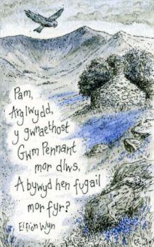Cyfres Pennill, Llun a Lliw - Cwm Pennant - Eirian Evans Cymric, Welsh Language, Wales, My Love, Farmer, Evans, Poetry, Lord, Songs