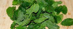 Conserver et utiliser la menthe du potager - La conservation de la menthe, expérience de plusieurs méthodes, mais commençons par la récolte, coupez les tiges au jardin et vous pouvez rentrer à la cuisine.