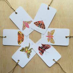 Winter Moth 6 Gift Tags
