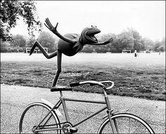 Ahaha Kermit <3