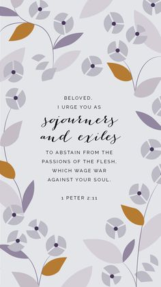 Peter   Nlt Lettering