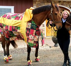 Christmas Gift costume - The Horse Tailor