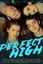 film Perfect High version francais, Regarder Gratuitement, Perfect High DVDRiP en bonne qualité Perfect High streaming vf