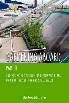 Tiny space garden guidelines--perfect for your boat. Living On A Boat, Growing Greens, Sail Away, Fresh Green, The Real World, Small Spaces, Sailing, Herbs, Yachts