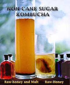 """kombucha-Kombucha is an effervescent fermentation of sweetened tea that is used as a functional food.    Sometimes referred to as a """"mushroom"""", the kombucha culture is actually a symbiotic colony of bacteria and yeast"""