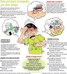 Que hacer en caso de padecer dengue