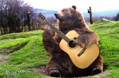 The hills are alive with the sound of music, my furry compatriot, ALIVE.