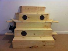 Chinchilla Custom Wood Playground