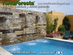 1000 Images About Proyecto Jardin On Pinterest Google
