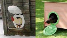Fallait y penser, une idée originale mais tout à fait pratique de recycler son abattant WC en chatière pour votre poulailler. C'est à peu près le même concept, sauf que la journée vous laissez le battant ouvert accroché en l'air ou ouvert à terre. Vous le fermez le soir pour garder vos poules en...