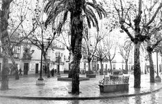 Plaza de San Lorenzo Sevilla Spain, City, Plaza, Painting, Car Ports, Saint Joseph, Antique Photos, Blanco Y Negro, Cities