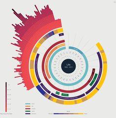 Infographie curriculum vitae