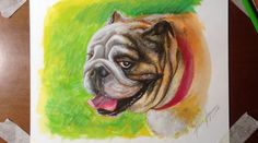 SPEED DRAWING TIME-LAPSE: HAPPY BULLDOG (GOUACHE, ACRYLIC PAINTS AND COL...