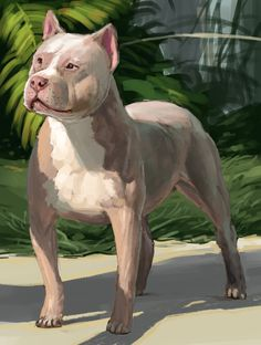 Concept art class: doggy study Concept Art, Study, Draw, Painting, Animals, Conceptual Art, To Draw, Animais, Studio