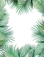 Palm Leaf Border vector art illustration