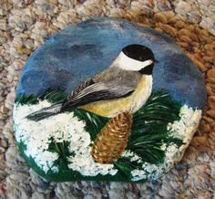 Chickadee Rock At by Emanuelle