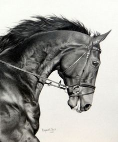"""Portrait of Jewel"" stunning graphite portrait by featured artist Margaret Dent; see more of her work at www.ArtsyShark.com"