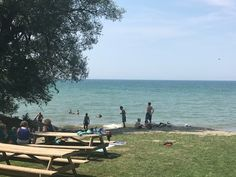 222 best lake erie wine country information things to do images rh pinterest com