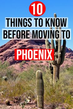 If you're thinking about moving to specifically living in Arizona, you'll want to check out this list: The 10 things you need to know before moving to Phoenix Arizona! Arizona City, Tempe Arizona, Scottsdale Arizona, Pheonix Arizona, Best Places To Move, The Big Year, Phoenix Real Estate, Gilbert Arizona, Living In Arizona