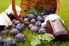 Výborná bezpracná švestková povidla Blueberry, Stuffed Mushrooms, Fruit, Vegetables, Food, Stuff Mushrooms, Berry, Vegetable Recipes, Eten