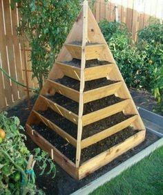 potager-pyramide-bois-etages-jardiner-debout