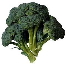Steamed broccoli nutrition is pretty high, pound for pound. Yet, the calories in broccoli are quite low. Steaming broccoli retains most of its nutrients. Broccoli Raab, Growing Broccoli, Broccoli Cheddar, Broccoli And Cheese, Broccoli Dip, Cheddar Cheese, Broccoli Plant, Grilled Broccoli, Healthy Foods