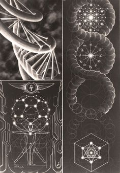 If you exist you shall persist - Synaptic Stimuli / / Sacred Geometry Illustration Photo, Geometry Art, Geometry Tattoo, Sacred Geometry Symbols, Fractal Geometry, Mystique, Visionary Art, Flower Of Life, Fractal Art