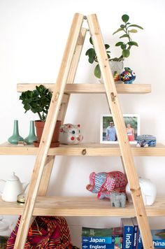 DIY LADDER SHELVES - love to do this one day! Maybe paint it grey.