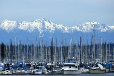 Swantown Marina with the Olympics in the background. Olympia, WA #statriotic #statriotism #MRW