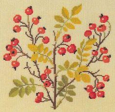 ♥Meus Gráficos De Ponto Cruz♥: Flores e Frutas em Ramas - parte 2