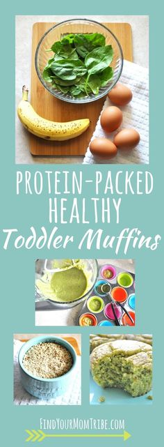 Toddler meals 65865213284194197 - Looking for a healthy toddler muffin without all the junk? Look no further! These delicious muffins are real food, paleo, gluten free, dairy free and refined sugar free. Healthy Toddler Muffins, Toddler Snacks, Healthy Kids, Healthy Snacks, Healthy Recipes, Detox Recipes, Healthy Muffins, Baby Puree Recipes, Baby Food Recipes