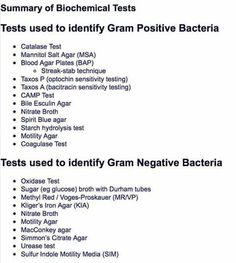 Tests used for gram positive and negative bacteria- I miss Gen Micro Lab Medical Technology, Medical Science, Medical Facts, Forensic Science, Computer Science, Clinical Chemistry, Organic Chemistry, Medical Lab Technician, Lab Humor