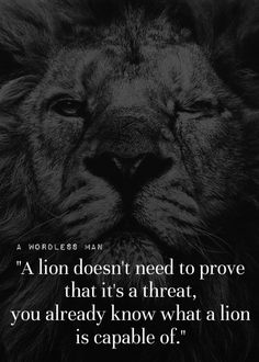 Have a lion attitude attack your goals like your life depends on it best quotes favorite quotes self improvement quotations frases messages tips quotes quote life best quotes ever manager quotes quote fandeluxe Choice Image