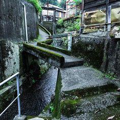 #東海道線 で#途中下車 して#蒲原 から#由比 まで#階段巡り。 #階段 はさほど多くないんだけど#路地 が非常に魅力的でした。 まあ#漁港 で素敵じゃない場所なんてないと思いますが… #高低差#坂道#街歩き#静岡#望月姓多い#石橋#水路#コンクリート#水門