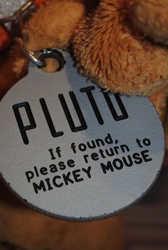 Pluto...photo by Suzanne Manning
