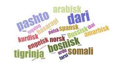 Siden alle mine elever snakker dari eller pashto er det disse språkene jeg har sett etter. Det finnes mange andre gode ressurser også. Flerspråklige fortellinger  Nyheter Hvordan bruke ressur…