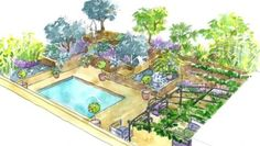 Conseils pour réaliser un jardin méditerranéen : http://www.deco.fr/jardin-jardinage/jardin-ornement/actualite-589766-amenager-jardin-mediterraneen-conseil-paysagiste.html