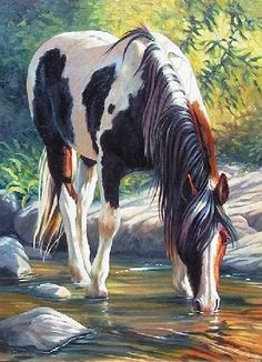 Paint Horse, beautiful painting of horse drinking out of the cool creek water. Please also visit www.JustForYouPropheticArt.com for colorful inspirational art. Thank you so much! Blessings!