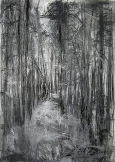 'Silpho Forest', Janine Baldwin, pastel, charcoal & graphite on paper, 67 x 48cm. Selected for The Pastel Society Annual Exhibition 2013, Mall Galleries, London. A greeting card is available of this work, see www.janinebaldwin.co.uk (exhibitions page) for stockists