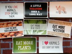 Vegan, Vegetarian, Animal Rights, Plant Based Diet Stickers. $2.50, via Etsy.