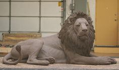 "Chicago's Lincoln Park Zoo of the Chicago Park District has a bronze sculpture of the beloved lion, ""Adelor,""which is located at the east entrance facing the Lakefront."