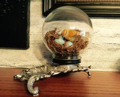 Bird under glass by me Deb P