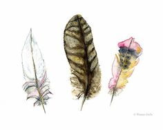 Watercolour Feathers Feather Print Nature by WinterOwls on Etsy Feathers, Etsy gifts, Etsy Australia, Birds