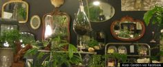 Interior of Arai Garden shop