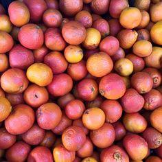 Algerian mandarins   Photo via The Mindful Diabetic