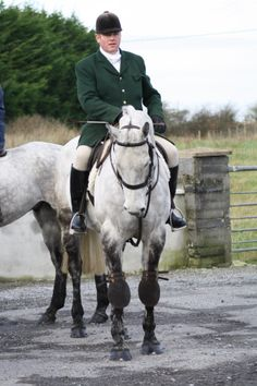 Hunting with the Grallagh Harriers