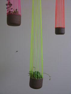 Bridget Bodenham jelly planter from Mr Kitly